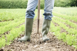 Die neue Landwirtschaft